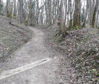 Promenade entre P et W
