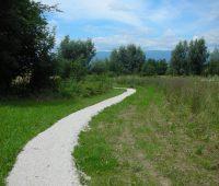 Visite guidée : l'histoire paysagère de Plan-les-Ouates