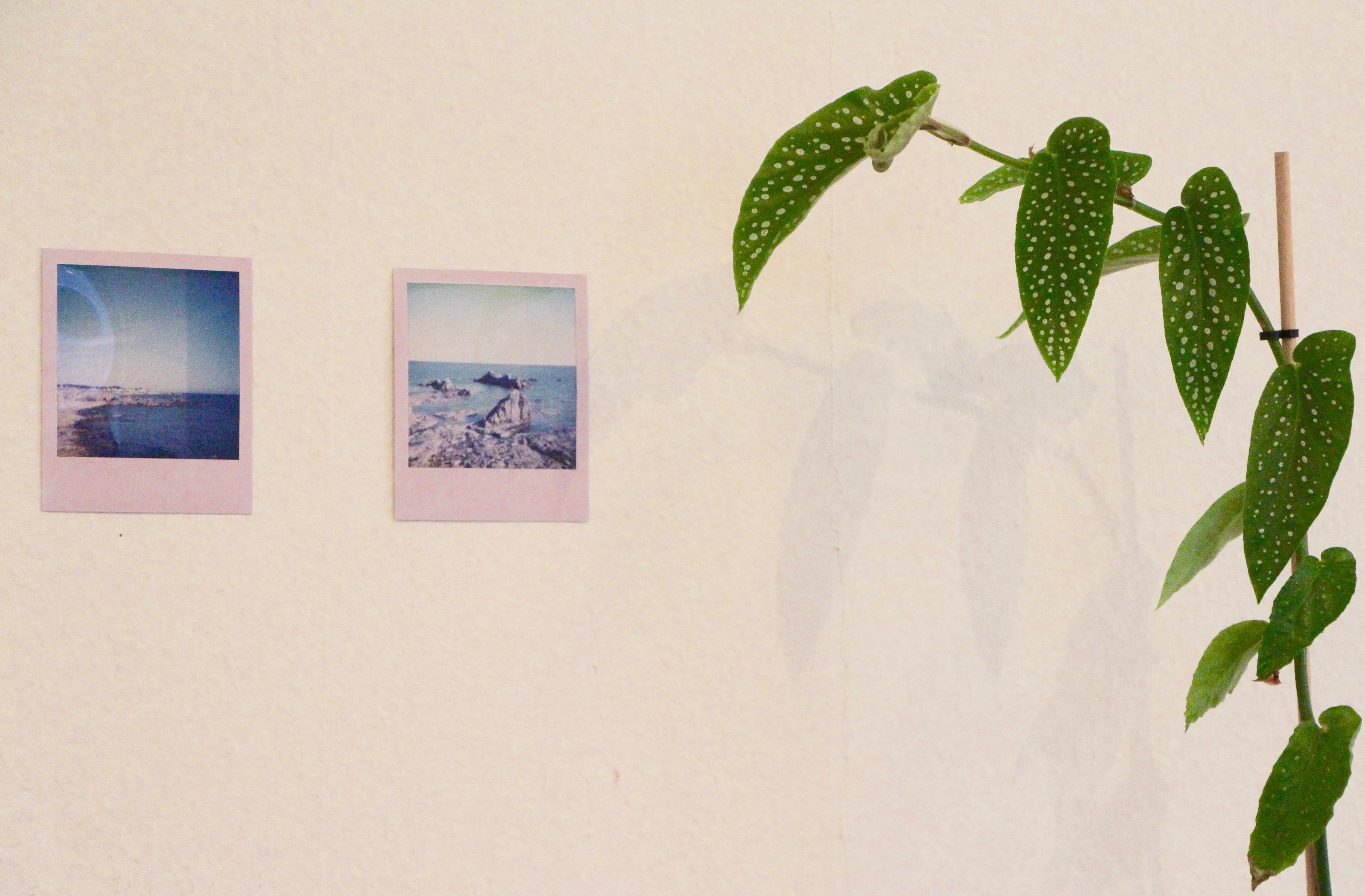 Atelier © E.Rousak