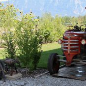 Halle aux tracteurs et autres merveilles agricoles