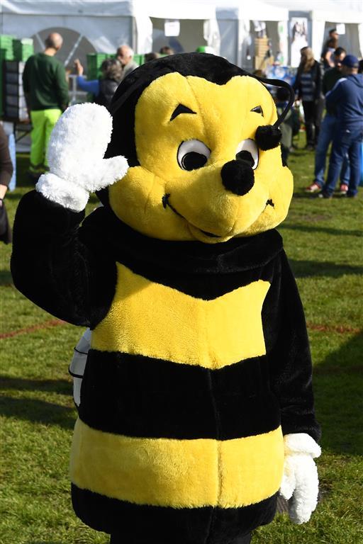 Fête de l'abeille et du terroir
