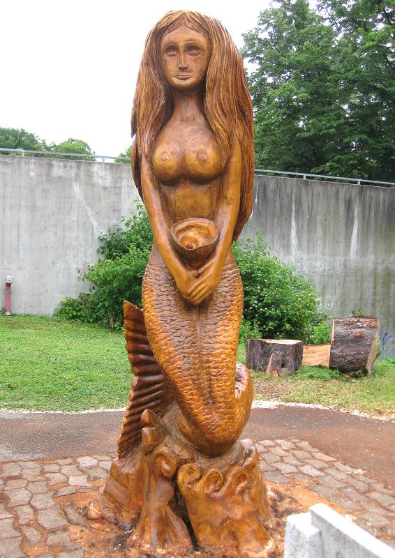 5b. La Sirène sculptée sur un vieux marronnier encore enraciné