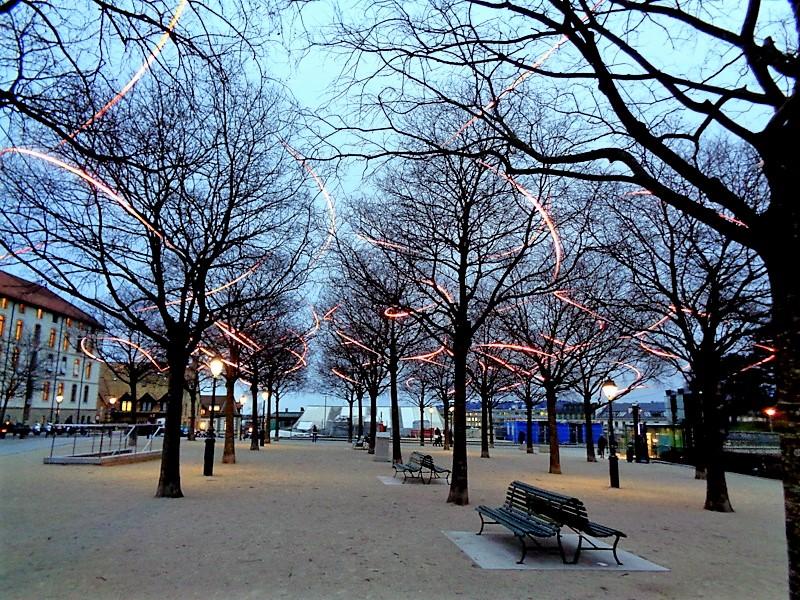 """Spark Ballet PITAYA, illuminations dans les arbres lors du """"Geneva Lux"""" à la Promenade Saint-Antoine"""