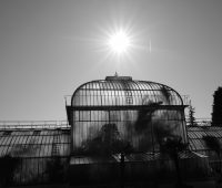 Promenade au Jardin Botanique
