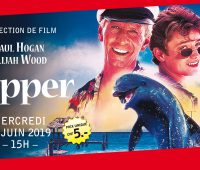 Projection de film – Flipper