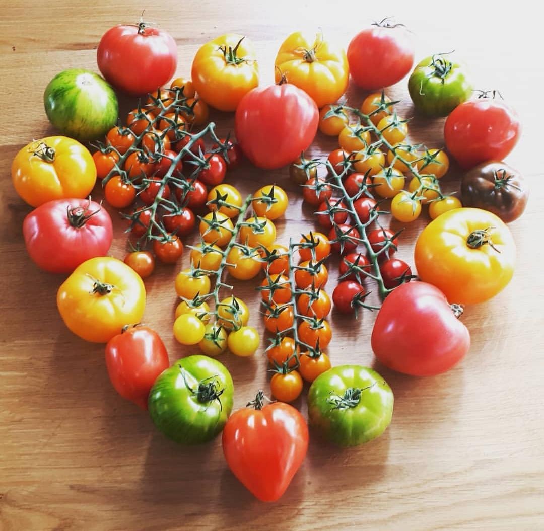 Coeur de tomates. © DR