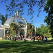 Conservatoire et Jardin botaniques : Expo «Symboles & Sentiments 2019 –  Secrets du monde végétal»
