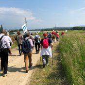 Sur le chemin des Vaudois et des Huguenots