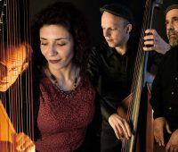 MODUS QUARTET …jazz transcontinental