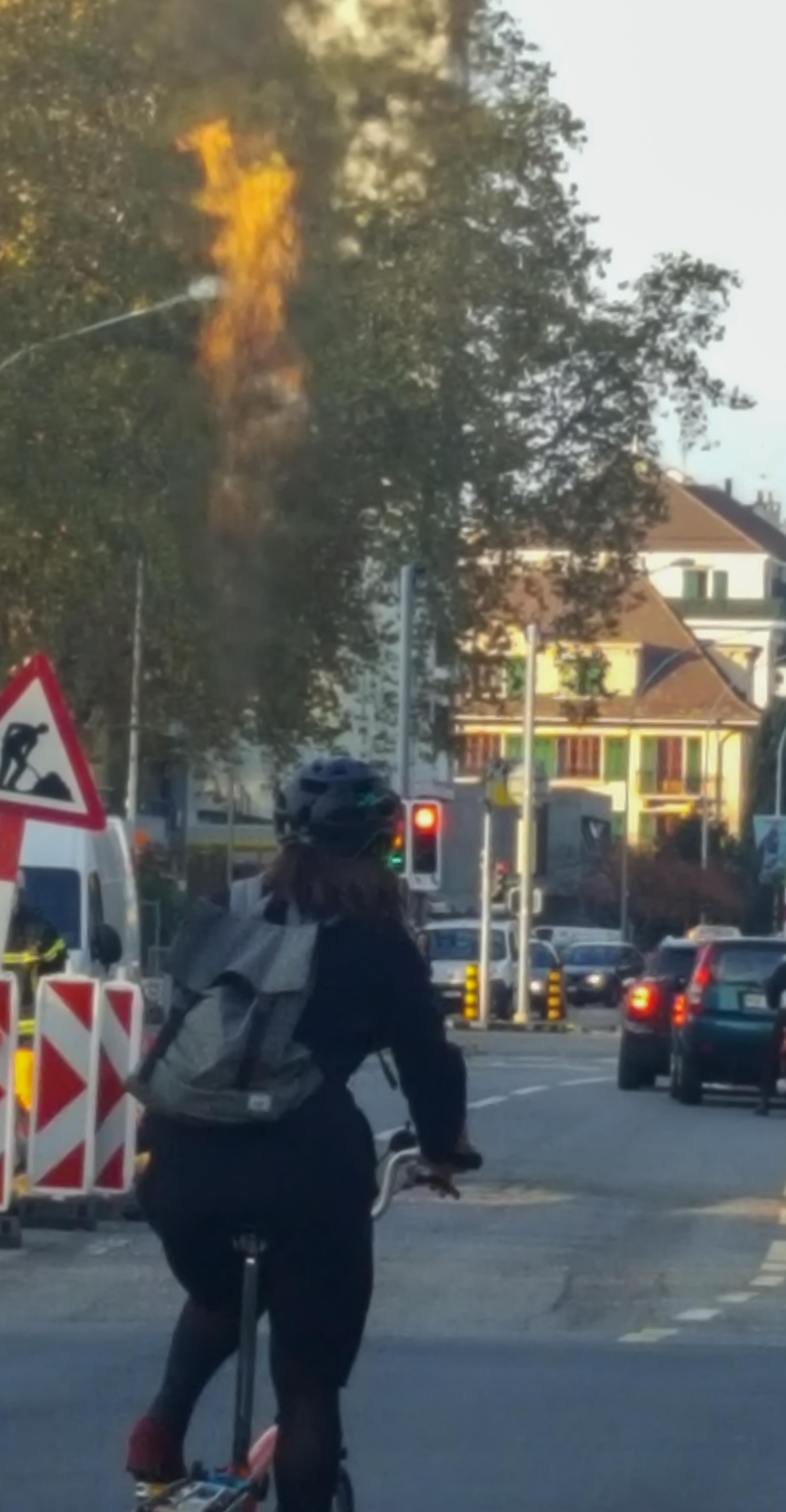 Boulevard des Promenandes, Carouge