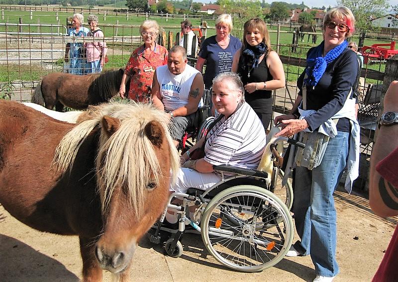 Les bénévoles accompagnent des patients lors d'une visite à la ferme