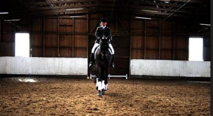 Manège d'Onex, malgré le confinement, l'entretien des chevaux est de rigueur, photo manège d'Onex