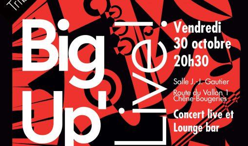 Big Up'Band – Tribute to Stevie Wonder, concert live et lounge bar