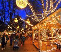 Le Marché de Noël 2020 au Jardin Anglais…