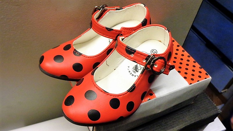 "Chaussures ""coccinelle"""