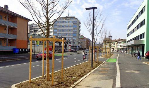 La route de Veyrier embellie par une forte arborisation et un renouvellement urbain