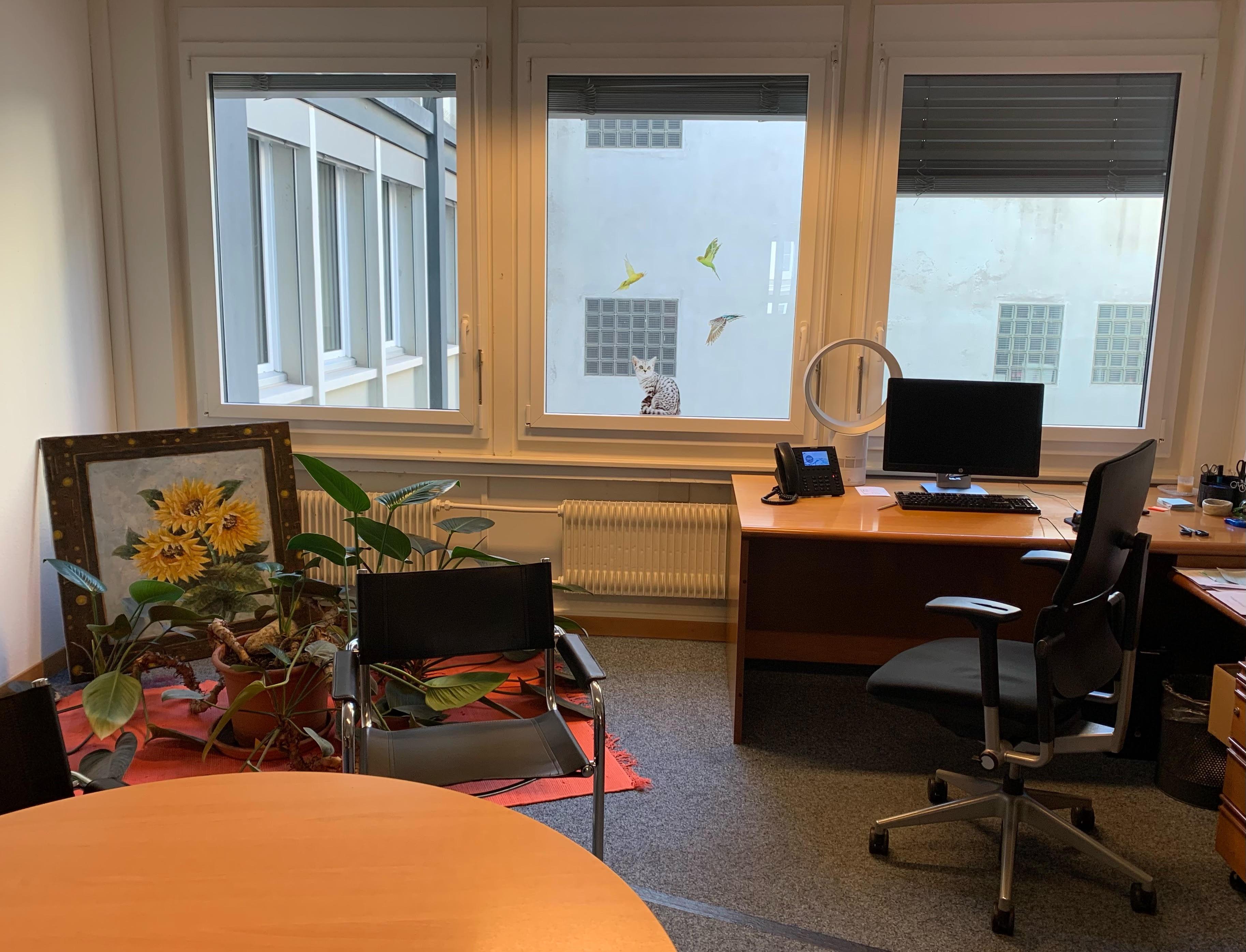 Les bureaux du Centre Lavi. © DR