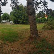 À la rencontre lieu enchanteur à Thônex : La Vieille École