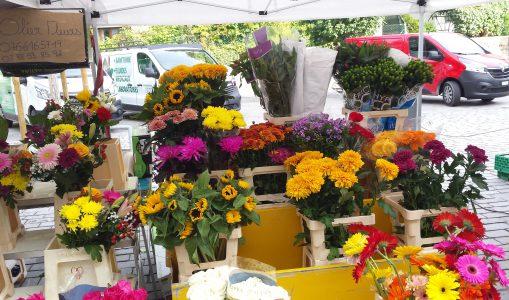 Visite du charmant marché du Petit-Saconnex